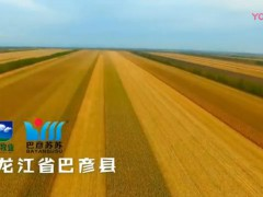 哈尔滨健康农牧业有限公司产品