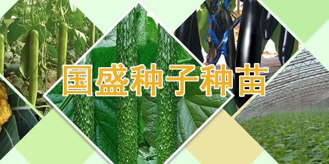 寿光市国盛种子种苗销售中心招商