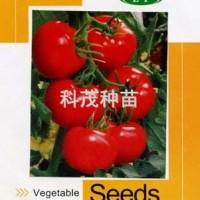 蕃茄种子:欧丽雅