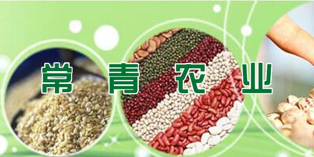寿光常青农业科技有限公司招商