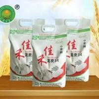 佳禾面粉龙麦34系列