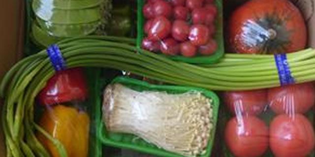 寿光广科蔬菜有限公司招商