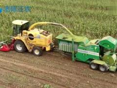 玉米秸秆青储机械作业,粉碎打包一体化,现代农业太发达了