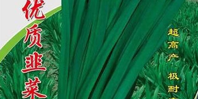 河南省韭优韭菜种子有限公司
