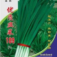 优质韭菜189F1种子