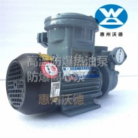 WM-30EX防爆热油泵 沃德防爆高温油泵